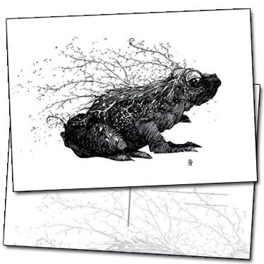 Illustration de la grenouille par Benjamin Basso sur carte postale
